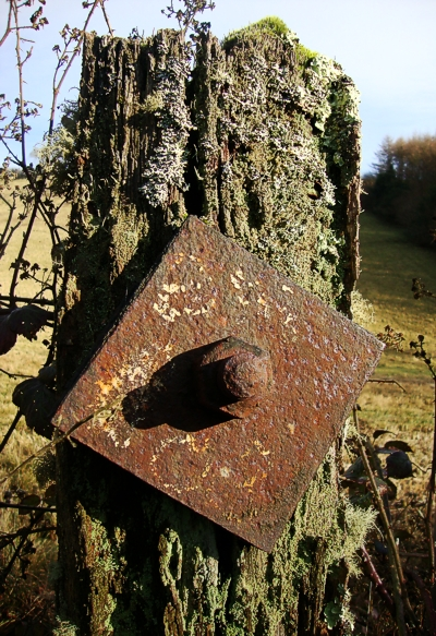 A wonderful old post at Causeland Station, Cornwall